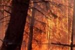 gaisrai_rusijoje