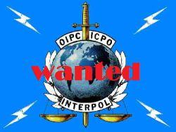 interpol_spalvotas