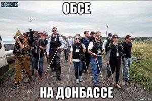 Ironiškas vaizdelis: aklieji ESBO stebėtojai.