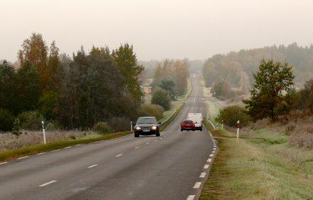 Paskutinės rudens dienos. Tuoj ateis žiema. Vytauto Visocko (Slaptai.lt) nuotr.