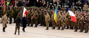 Prezidentė Dalia grybauskaitė apeina karinio parado rikiuotę. Vytauto Visocko (Slaptai.lt) nuotr.