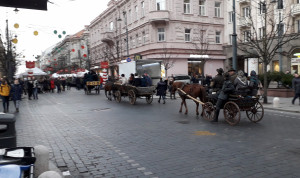 Vilniaus centre