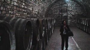 Goi gou gyvenvietės vyno daryklos požemiuose