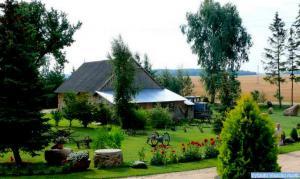 Ūkininko Gedimino Ališausko sodyba. Grikpėdžių kaimas, Pakruojo rajonas