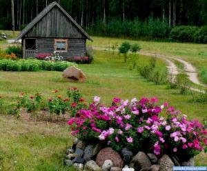 Janinos Stankevičienės sodyba Briedlaukio kaime, Zarasų rajonas1