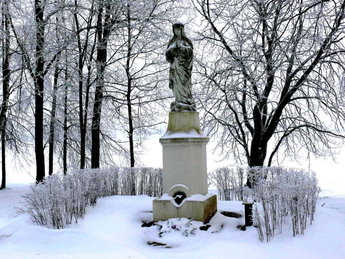 Žiema Šiaulių rajone. Vytauto Visocko (Slaptai.lt) nuotr.