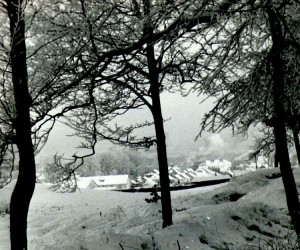 Šaltą 1955 metų žiemą