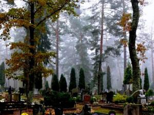 Alytaus kapinės