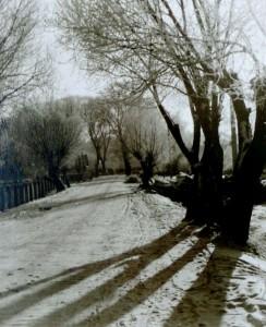 Gatvė netoli Vidzgirio