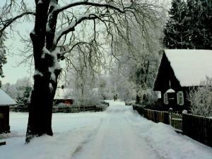 Kunigiškių kaimas (11)