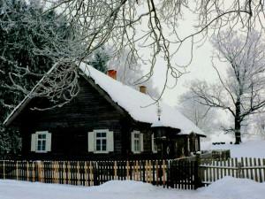 Kunigiškių kaimas (12)