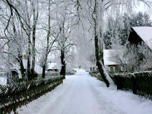 Kunigiškių kaimas (4)