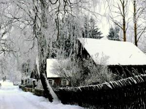Kunigiškių kaimas (6)