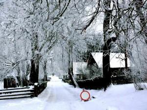 Kunigiškių kaimas (7)