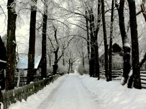 Kunigiškių kaimas (8)