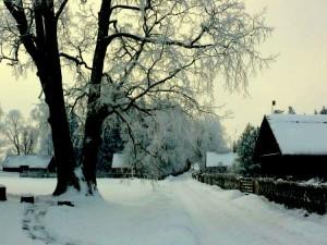 Kunigiškių kaimas (9)