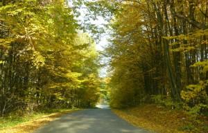 Kelias į Rumbonis (2)