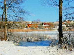 Balandžio sniegas (13)