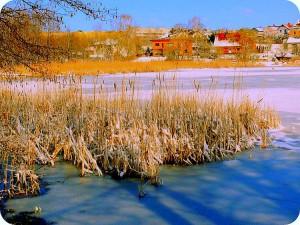 Balandžio sniegas (2)