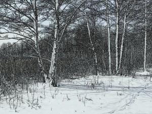 Balandžio sniegas (22)