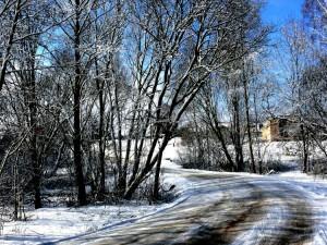 Balandžio sniegas (24)