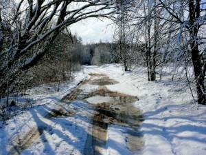 Balandžio sniegas (27)
