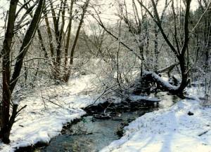 Balandžio sniegas (4)