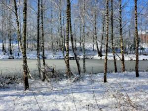 Balandžio sniegas (6)