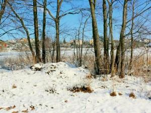 Balandžio sniegas (9)