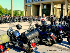Baltijos keliui dvidešimt (11)