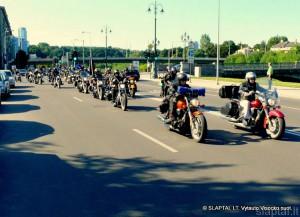 Baltijos keliui dvidešimt (15)