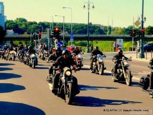 Baltijos keliui dvidešimt (16)