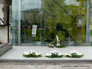Baltijos keliui dvidešimt (6)