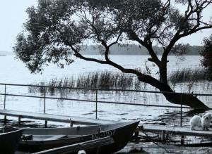 Šakarvos ežeras