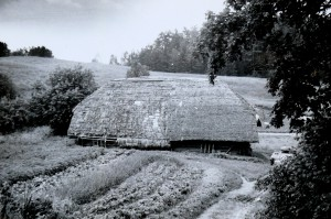 XX a. pradžios kluonas Salose II