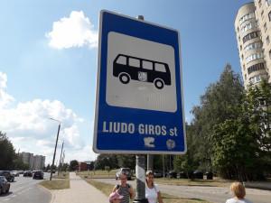 Liudo Giros stotelė - kam ji reikalinga. Slaptai.lt nuotr.
