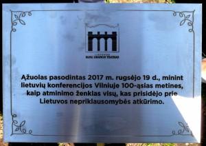 Lietuvių konferencijos minėjimas (11)