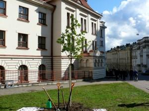 Lietuvių konferencijos minėjimas (13)