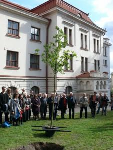 Lietuvių konferencijos minėjimas (4)