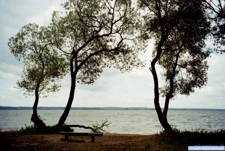 Dusios ežeras