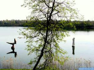 Vilnojos ežeras