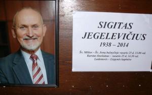 In Memoriam (15)