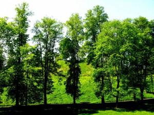 Birštono piliakalnis