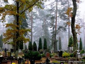 Alytaus Daugų kapinės (1)