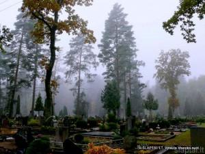 Alytaus Daugų kapinės (2)