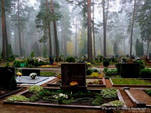 Alytaus Daugų kapinės (3)