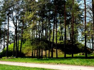 Pelaniškių piliakalnis