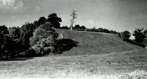 Tauragnų piliakalnis