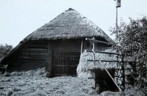Ožkinių kaime