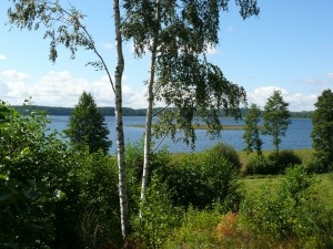 Siesarties ežeras